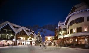Ski hotel sale